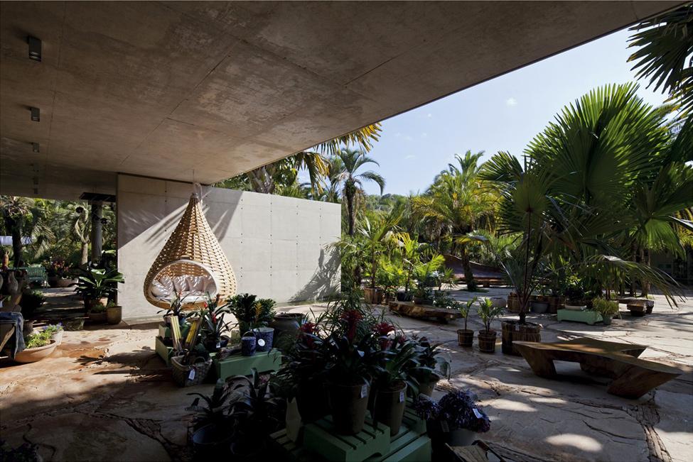 Ботанически-магазин-в-Бразилия-отворен-заслон