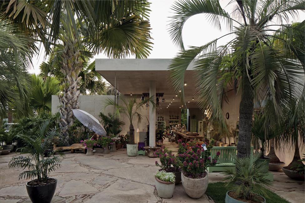 Ботанически-магазин-идеи-за-дизайн-Модерна-архитектура